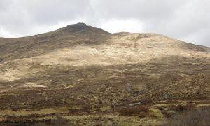 Rare White Stag Caught on Film in Scotland