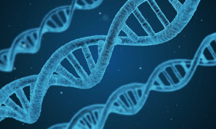 Artist impression of DNA double helix. (Qimono/Pixabay)