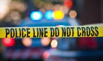 Woman Chases Dog Across Pennsylvania Highway Causing 3-Vehicle Pileup