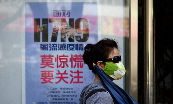 A woman wears a face mask as she walks past a poster showing how to avoid the H7N9 avian influenza virus, by a road in Beijing on April 24, 2013. (Wang Zhao/AFP/Getty Images)