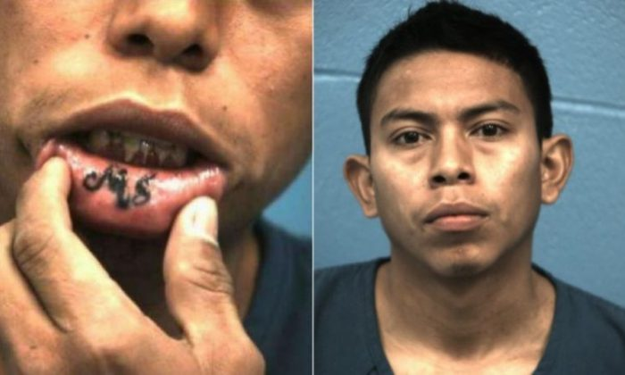 Documented MS-13 gang member Jorge Alexander Cortez (pictured) and Bryan Funes were arrested for attempting to commit murder. (Williamson County Sheriff's Office)