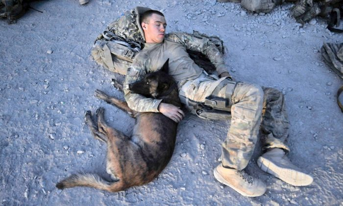 US Army Specialist Justin Coletti resting with Dasty, a Belgian Malinois at an airfield of Forward Operating Base Pasab in Kandahar, Afghanistan, on Aug. 15, 2011. (Romeo Gacad/AFP/Getty Images)