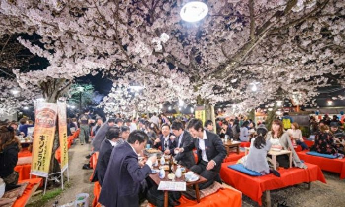 Celebrating spring with cherry blossoms isn't just about the flowers—it's also what you're drinking