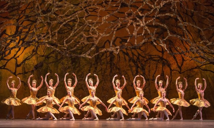 "A scene from the National Ballet of Canada's production of ""The Sleeping Beauty."" (Aleksandar Antonijevic)"