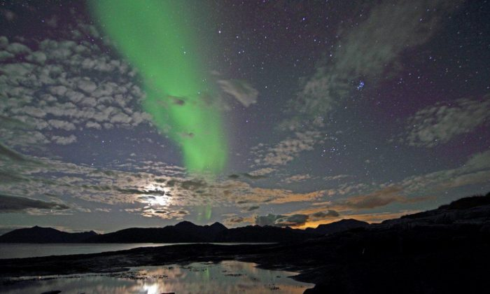 """Northern lights at Hillesoy Island, Norway. Amateur scientists in Canada have helped researchers discover a new type of northern lights, dubbed """"Steve."""" (Frank Olsen/Public domain)"""