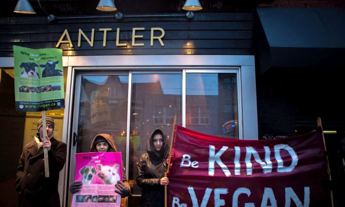 Vegan protesters gather for the sixth time outside of the Antler restaurant in Toronto on March 31, 2018.  (THE CANADIAN PRESS/Chris Donovan)