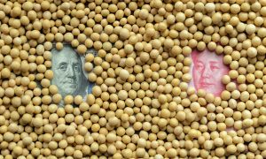 Faced With Own Tariffs on American Soy, China Launches 'Emergency' Campaign to Boost Domestic Soybean Production