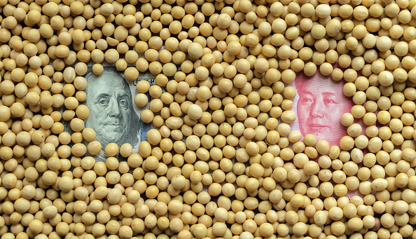 Soybeans and Banknotes of US Dollar VS RMB, arranged for photography. (Zhang Peng/LightRocket via Getty Images)