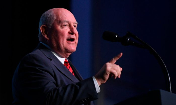 Sonny Perdue US Secretary of Agriculture,  speaks at the American Farm Bureau Federations 99th Annual Convention at Opryland in Nashville, Tennessee, on Jan. 8, 2018. (Photo credit should read JIM WATSON/AFP/Getty Images)
