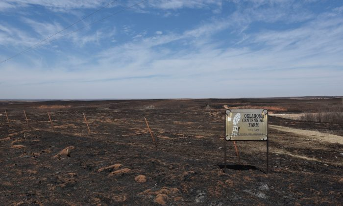 Pastures burnt by the Rhea Fire are seen near Taloga, Oklahoma, on Apr. 17, 2018. (REUTERS/Nick Oxford)