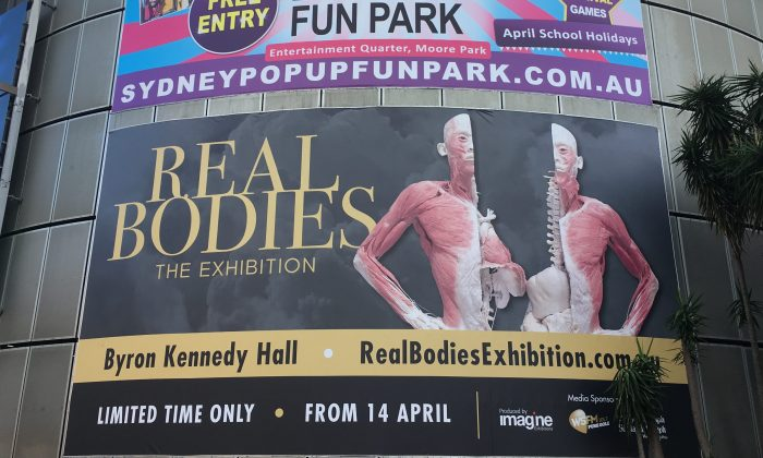 Real Bodies: The Exhibition opened to the public in Sydney, Australia, on April 14, 2018, with protestors gathering out the front of the venue to voice their concerns over the sourcing of the real human corpses on display. (Melanie Sun/The Epoch Times)