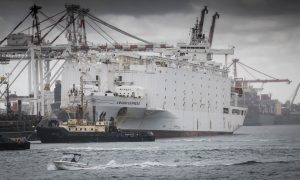 Australia Toughens Welfare Standards for Live Animal Exports After Death of 2,400 Sheep