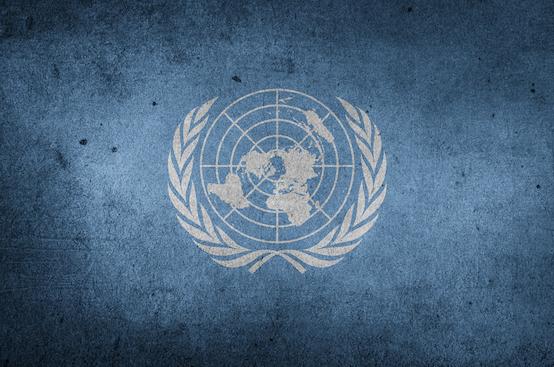 (United Nations - screenshot)