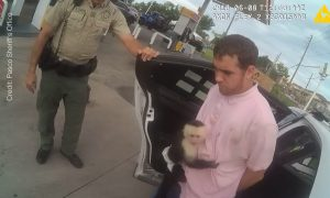 Police Arrest Car Theft Suspect, Find a Monkey Attached to His Shirt