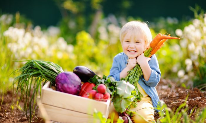 Children are the most vulnerable and affected by the food they eat, so we want to feed them the safest and best quality food possible. (Shutterstock)