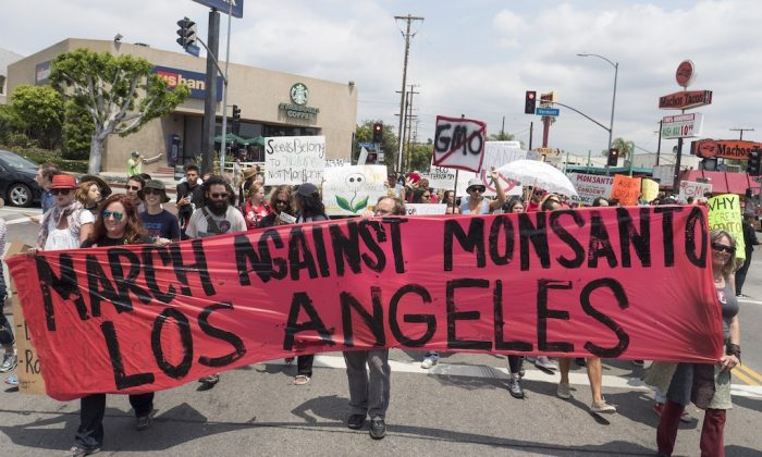 Activists take part in a march against US agrochemical giant Monsanto and GMO food products, May 23, 2015, in Los Angeles, California.   (Photo credit should read ROBYN BECK/AFP/Getty Images)