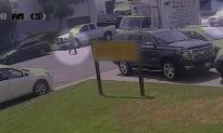 Caught on Camera: Purse Thief Rams SUV Into Woman and Drives Off