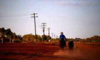 Against the Grain: Australian Banks Face Rural Lending Reckoning