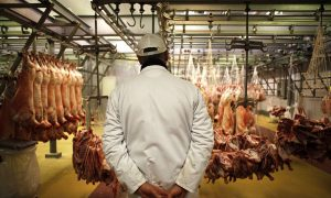 French Butchers Call on Government for Protection From Violent Vegans