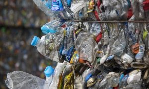 Australian Government to Create 10,000 New Jobs From Recycling Fund