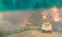 Man Arrested for Starting Colorado Wildfire