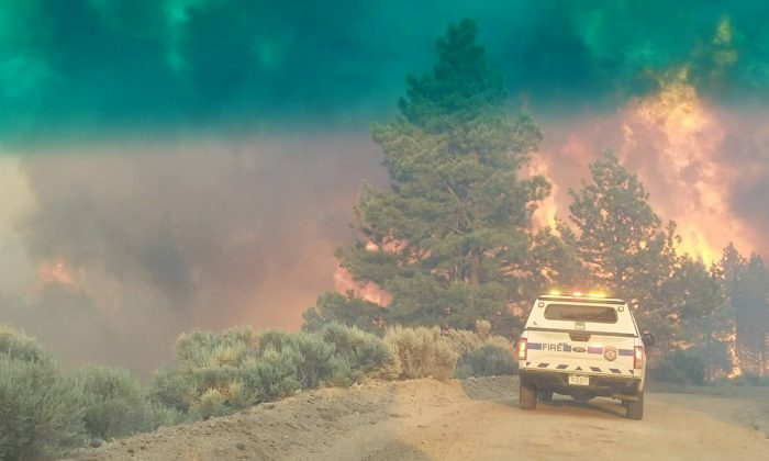 Flames rise from a treeline near an emergency vehicle during efforts to contain the Spring Creek Fire in Costilla County, Colorado on June 27, 2018. (Costilla County Sheriff's Office/Handout via REUTERS)