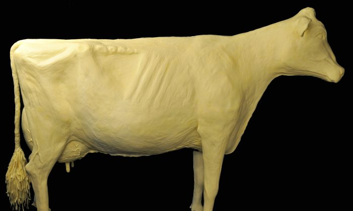 The butter cow by sculptor Sarah Pratt. (Courtesy of Iowa State Fair)