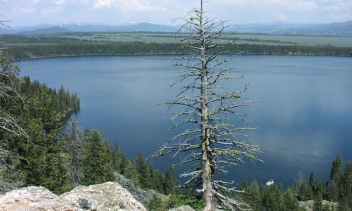 The fissure observed recently in the Grand Teton National Park has nothing to do with the Yellowstone Supervolcano, officials said. A view of Jenny Lake in Grand Teton National Park. (National Park Service)