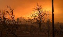 Woman, Her 2 Great-Grandchildren Found Dead in California Fire