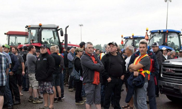 Dairy farmers take part in a demonstration to protect supply management in Quebec as Prime Minister Justin Trudeau and his government convene for a two-day caucus meeting in Saguenay, Quebec, on Aug. 25, 2016. (The Canadian Press/Jacques Boissinot)