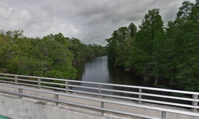 A 4-year-old Florida girl was thrown from a bridge and died, and a woman who is believed to be her mother was arrested, police said. (Google Street View)