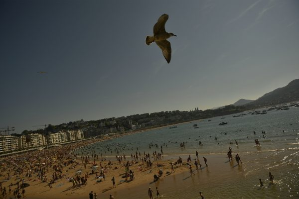 A seagull flies over at La Concha beach during a hot summer day in the basque city of San Sebastian, northern Spain, Friday, Aug. 3, 2018. (AP Photo/Alvaro Barrientos)