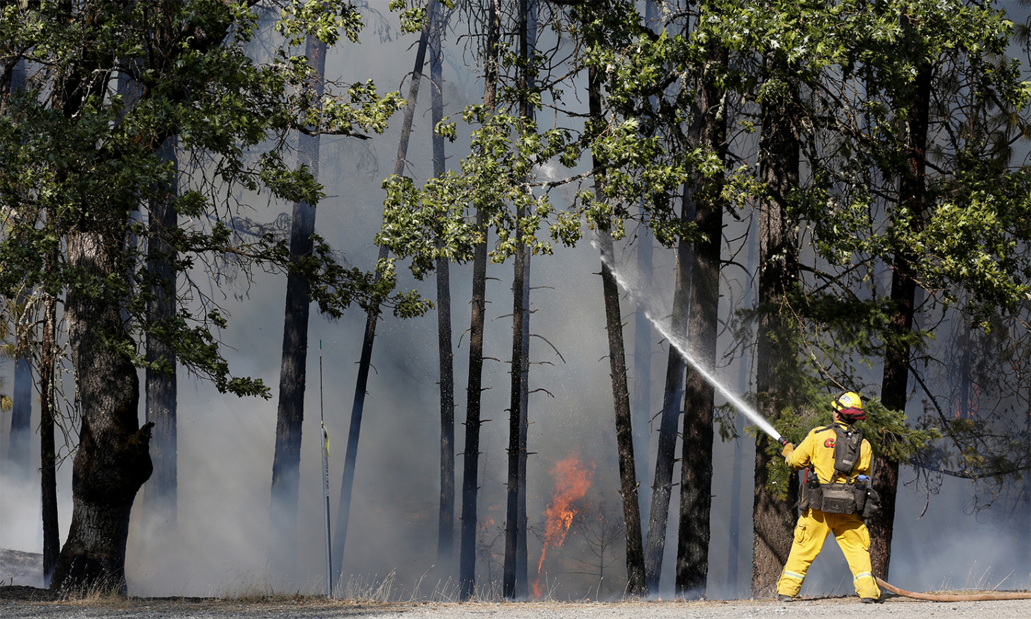 Firefighter Derek Longoria, of CalFire's Shasta-Trinity Unit, extinguishes flames near State Highway 299 while battling the Carr Fire near Redding, California on July 30, 2018. (Terray Sylvester/Getty Images)