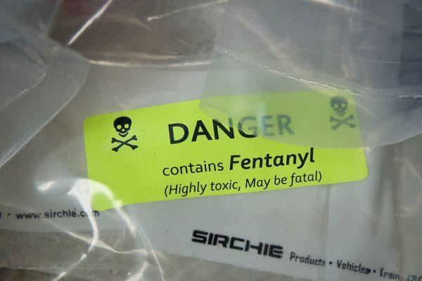 synthetic opioid fentanyl