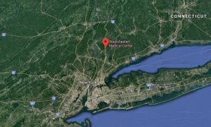 Man, Woman Die in Murder-Suicide at Hospital Near New York City
