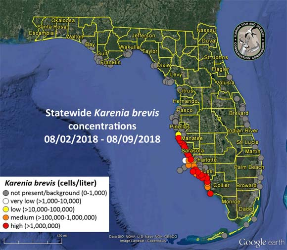 Red tide locations in southwest Florida. (Florida Fish and Wildlife Conservation Commission)