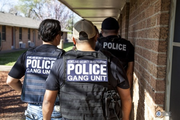 Members of Immigration and Customs Enforcement's HSI gang unit carry out an operation in Maryland on May 20, 2016. (ICE)