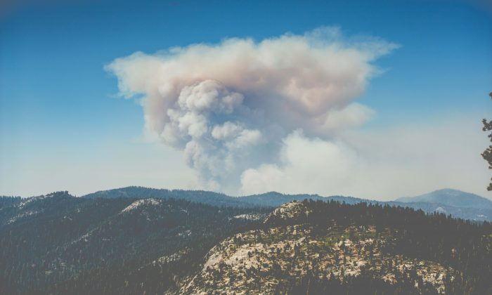 Sonoma County, City Of Napa Getting Federal Grant Money For Wildfire Recovery                     Photo by Dominik Lange on Unsplash