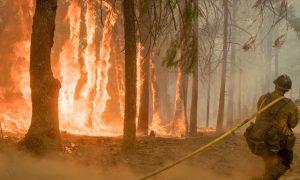 Lightning Storms Mass Over California, Oregon as Wildfires Blaze