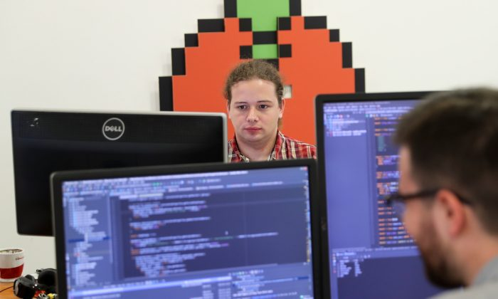 Programmers work on computers in Belgrade, Serbia, July 4, 2018. Picture taken July 4, 2018. REUTERS/Marko Djurica