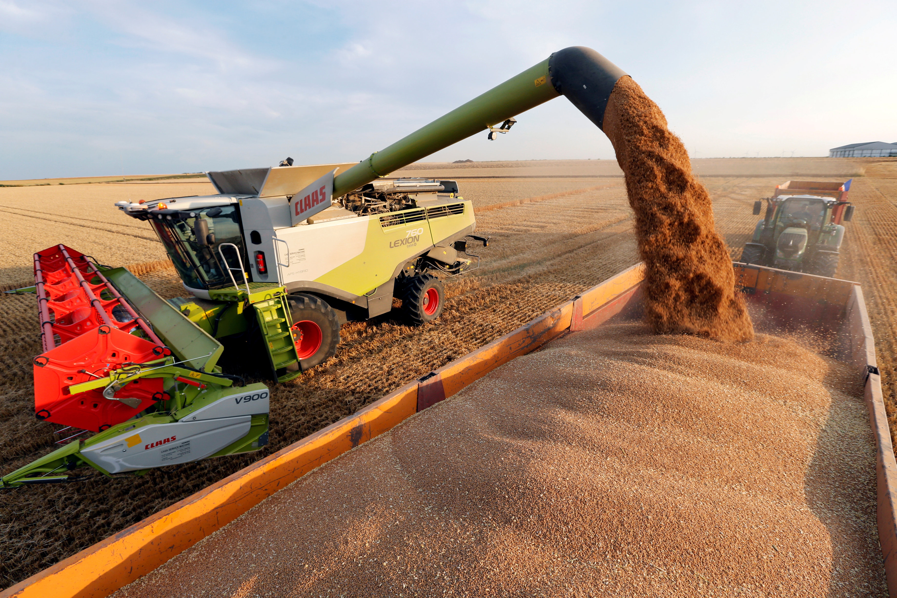 A French farmer harvests wheat.