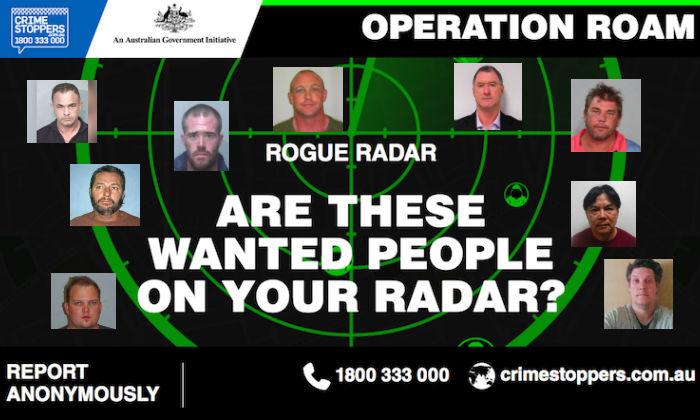 (RogueRadar.com.au)
