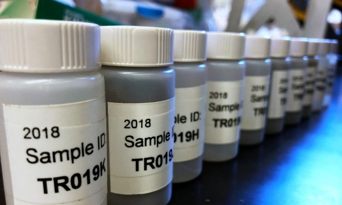 Lead samples line up ready for testing at the Lamont-Doherty Earth Observatory in Palisades, New York, U.S. March 29, 2018.     Picture taken March 29, 2018.      REUTERS/Mike Wood/File Photo