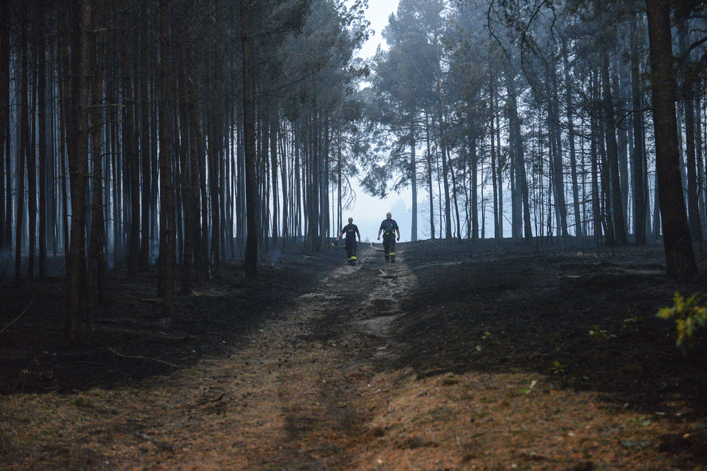 Germany Wildfires