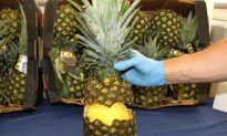 Spanish Police Seize Cocaine Hidden in Pineapples