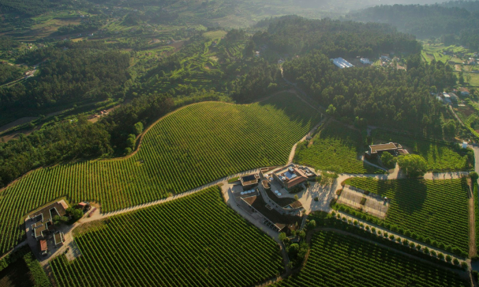 The Monverde Hotel, in the Douro countryside, is home to Quinta da Lixa winery, which produces Vinho Verde wines. (CVRVV)