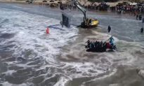 Video Shows Stranded Orca Being Returned to the Sea in Argentina