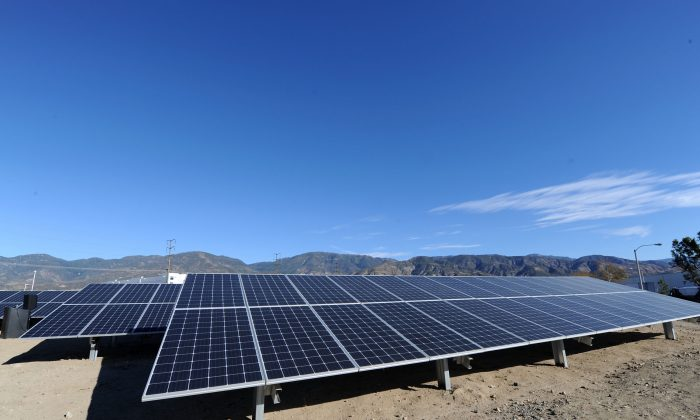 New solar panels at the Mars Petcare San Bernardino Solar Garden Unveiling in San Bernardino, Calif. on Dec. 12, 2017. (Photo by Joshua Blanchard/Getty Images for Mars Petcare)