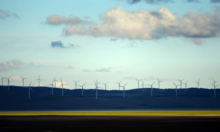 Wind turbines on the outskirts of Canberra on Sep. 18, 2013. (SAEED KHAN/AFP/Getty Images)