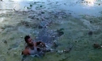 Florida Man Flees Traffic Stop, Jumps Into Algae-Filled Canal